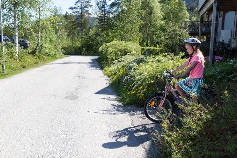– FALREG KRYSS: Elisa Sigdestad (8) må gjere denne kryssinga av vegen på sykkel når ho skal til og frå skulen. Nyleg var ho nær å bli påkøyrd. I ettertid har mora klippt hekken, for å gjere det meir oversiktleg.