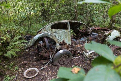 Dette bilvraket ligg i skogen ved Jølstra og Hafstadparken. No vil kommunen ha det fjerna.