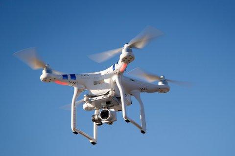 PÅ HJORTETELJING: Forskarane skal no bruke drone til å telje hjort på seinvinteren. Utstyrt med termiske kamera håpar dei å få ein meir eksakt oversikt over kor mykje dyr vi har i skogane.