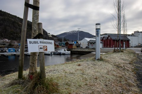 STRAUMPUNKT: Her har båtklubben sett opp strøym for dei bubilane som er innom.