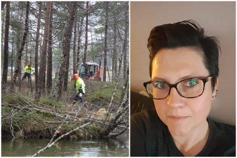 TREFELLING: Beate Green i Dyrebeskyttelsen Norge Sogn og Fjordane er bekymra for dyrelivet no om våren. Bilde av skogsfellinga er eit illustrasjonsbilde.