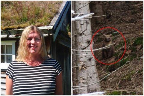 STIRA: Denne stod lenge å stirra på Caroline Solibakke. Ho måtte spørje fleire vener om hjelp for å finne ut kva dyr det var.