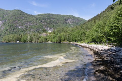 NO KJEM DO-LØYSINGA: Etter eit spørsmål i formannskapet i Sunnfjord kommune snur kommunen og jobbar no for å få løyve til å sette opp eit toalett ved badeplassen