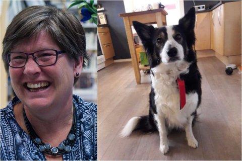 LEITAR: Anne Sagen sin hund, Ella, forsvann torsdag kveld. No er ho ute på leit, i håp om å finne kjæledyret sitt.