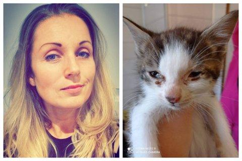 REAGERER: Anne Jo Bjordal er redd for at denne katten er ein av veldig mange som har fått dårleg stell av eigaren sin. Bjordal har varsla Mattilsynet om saka, men føler dei ikkje tek den nok på alvor.