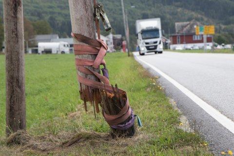SNURPA SAMAN: Stolpen ved E39 på Byrkjelo var knekt og sikra med lastestropper då Firda passerte før helga.