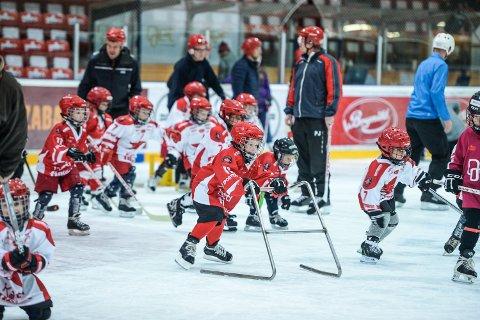 Mange aktive: Stjernens ungdomsavdeling har rundt 200 aktive spillere i alderen 7-20 år. Her fra fjorårets hockeyskole. (Arkivfoto: Kent Inge Olsen)