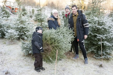 Juletre: Nicolay Blakkestad bærer foran, og Anette Madsen, Bjørnar Nilsen og Aleksander Enholm dannet baktroppen da de bar med seg juletreet. Alle foto: Jan Erik Skau