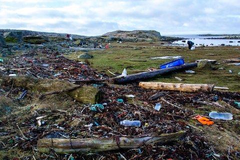 Store mengder: Bildet er fra strandrydding på Akerøya. Det er mye plast i havet, i fjæra og på strendene.