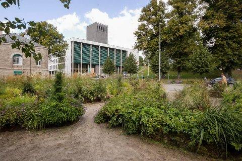FJERNES: Blomsterlabyrinten ved Lykkeberg skal blir noe helt annet. I løpet av kort tid skal blomstene fjernes og tomta skal planeres.