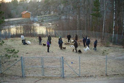 Populær hundepark: Nabo Marit Øgar Asbrenn berømmer tilbudet, men misliker plasseringen og saksbehandlingen.