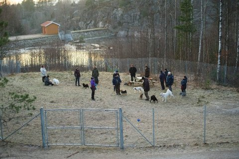 BESTÅR: Fylkesmannen i Østfold har bestemt at hundeparken i Bjørndalen får bestå.