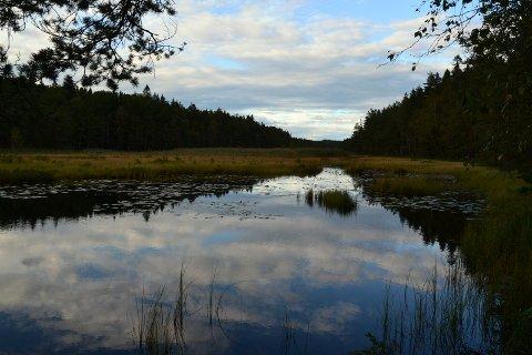 MÅ OPPGRADERES: Stordammen i Fredrikstadmarka. Dammen er klassifisert i den aller høyeste konsekvensklassen for dammer fordi et dambrudd her vil gi store konsekvenser for mange. Nå vil rådmannen bruke 15 millioner kroner på oppgradering av anlegget. Arkivfoto: Terje Antonsen