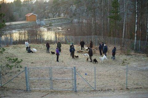 Får bestå: Hundeparken i Bjørndalen får leve videre. Det avgjorde politikerne i planutvalget torsdag kveld.
