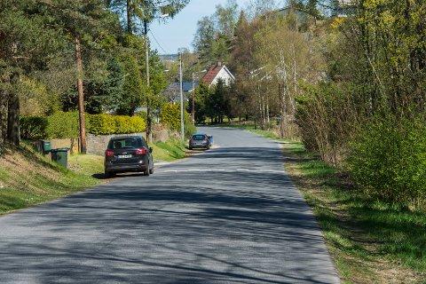 HER BLIR DET GANGVEI: Det er her, blant annet ved siden av grøntområdet ved Bingedammen, at den nye gang- og sykkelveistrekningen i Lisleby allè kommer.