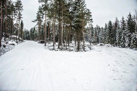 For alle: Det nye skianlegget i Brønnerødskogen på Veum får både krevende og slake bakker - altså noe for alle. Det skal åpnes i februar. Bildet viser noe av traseen.