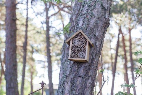 Insekthotell: Hagen trenger insekter, og Mette har flere insekthotell rundt i hagen. Et slikt hotell vil tiltrekke seg mange ulike nytteinsekter som gjør at andre små dyr vil finne seg mat der.