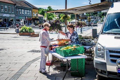 Torghandlerne har ikke strømmet til byens torg etter at de ble gratis å bruke for å selge egenproduserte varer. Fredrikstad kommune anslår at de har fått søknader fra tre aktører siden torghandel ble gratis før sommeren.