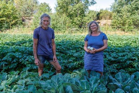 Suksess: Småbruker Rolf Krogh-Sørensen er en av dem som leverer grønnsaker direkte til forbrukerne gjennom Reko-ringen. Annike Selmer Thorkildsen er administrator for den nyopprettede gruppen. De kan begge være  fornøyde med at svært mange ønsker å kjøpe rett fra produsentene.