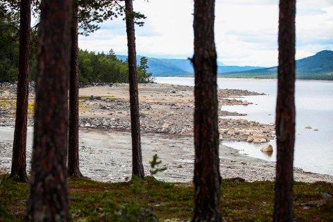LITE VANN I MAGASINENE: Tørken har gjort at vannstanden er lav her i Pålsbufjorden og i andre oppdemmede vann i Norge. Foto: Lise Åserud (NTB scanpix)