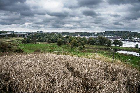 RETT VED E6: Her lå det planlagte utbyggingsområdet på Domberg. Politikerne sier nei til næringstomter når arealplanen skal vedtas torsdag 18. juni. (Arkivfoto: Geir A. Carlsson)