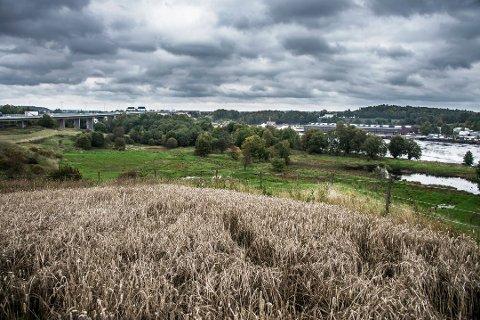 Bystyret sier nei til utbygging: Dette området på Domberg, rett ved E6, skulle bygges ut som næringsområde. Nå har bystyret snudd. (Arkivfoto: Geir A. Carlsson)