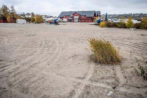 HER KAN DET BLI FERGELEIE – EN STUND: Fredrikstad kommune kan få bruke et 15 dekar stort område ved vannet i Østkilen som midlertidig parkering. Her anslår Frode Samuelsen, virksomhetsleder parkering og transport, at det kan være plass til et par hundre biler.
