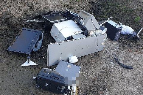 Henslengt i skogen: Kommunen får stadig meldinger om forsøpling i naturen, som disse elektriske produktene. Turgåer Egil Robbestad fant dem i skogen bak Borge kapell.