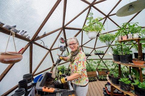 Dette er et av geodome- byggene til Anne Marit Skovly på Vesterøy. Hver bygning består av 105 trekanter, og er en etterligning av jordkloden. I denne har hun laget drivhus.