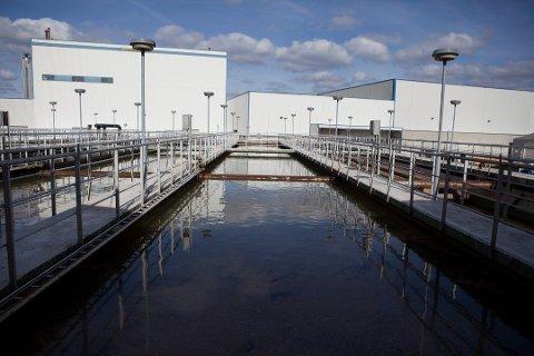 Oppfyller ikke rensekravene: Frevars anlegg på Øra klarer ikke å fjerne 90 prosent av fosforet. Hovedårsaken er at avløpsledningene frakter med seg for mye fremmedvann, vann fra tak og fra industri. (Arkivfoto: Frida Tørring)