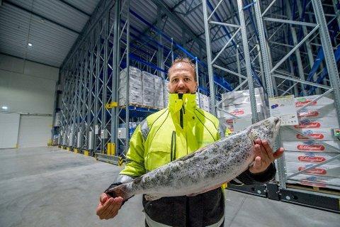 Får nye eiere: Daglig leder Thomas Schjerpen Karlsen ved Glacio Fredrikstad leder en bedrift i sterk vekst.  Lageret er en viktig havn for frossen fisk. (Arkivfoto: Erik Hagen)
