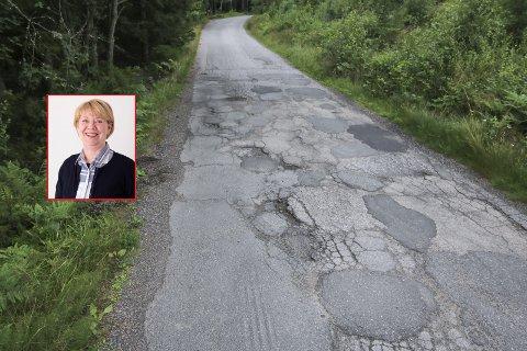 VILLE UTBEDRE DENNE VEIEN: Gretha Thuen (H) foreslo å starte utbedring av Porsmyrveien i Torsnes i år, men fikk ikke politikerkollegene med seg. Dette bildet ble tatt av veien i fjor sommer.