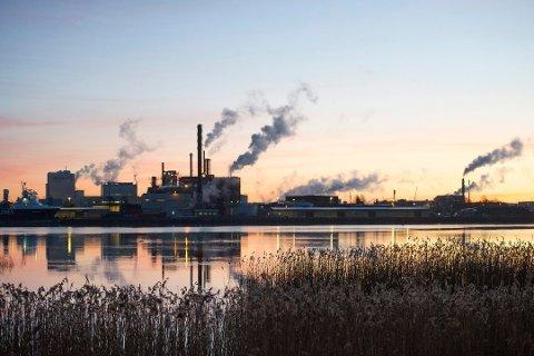 PROTEST: Fylkesmannen i Oslo og Viken sier nei til å bruke et 35 mål stort område øst på Øra til industritomt. Eiendommen er et våtmarksområde og er satt av til LNF-område i dag. Foto: Johnny Leo Johansen