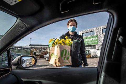 Elisabeth Lundemo (29) ved Hageland på Råbekken mener reglene bør være like for alle distriktets blomsterhandlere, og er derfor kritisk til at en del blomsterforretninger har satt ut blomster til selvbetjening. På Hageland må alle varer forhåndsbestilles og -betales.