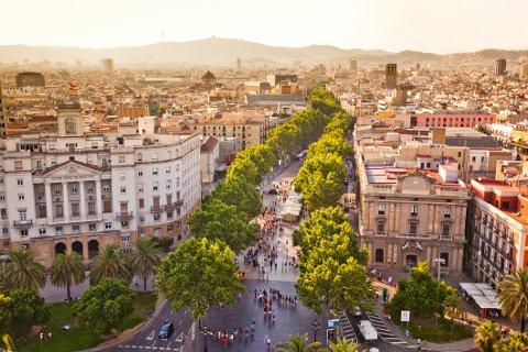 La Rambla i Barcelona er en grønn aveny gjennom storbyen.   Den nye Parkgata på FMV blir 38,5 meter bred, og får omtrent samme bredde som La Rambla.