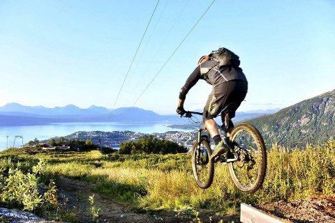 Begynnelsen: For tre år siden plasserte Per Bakkejord et hopp hvor dette bildet er tatt. Det ble starten på det som nærmer seg en to kilometer lang sykkelløype i Ankenesfjellet. Foto: Privat