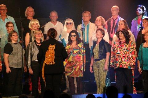 2017, Folkets Hus, Korslaget, Monia Buyle