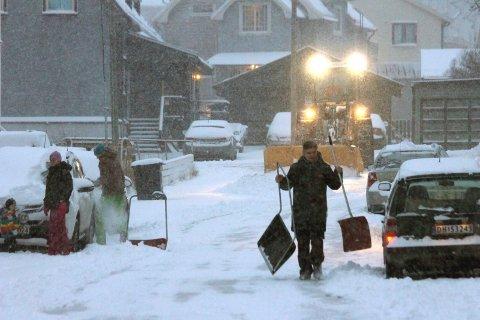 LAVER NED: Det vil komme mer snø de neste dagene. Arkivfoto: Odd-Georg H. Benjaminsen