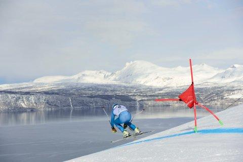GRATULERER: – Får Norge og Narvik arrangere alpin-VM er det gull verdt i promoteringen av Nord-Norge som reisemål og Norge som skidestinasjon i årene som kommer, sier Bente Bratland Holm, reiselivsdirektør i Innovasjon Norge.