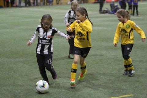 Lørdag vil det myldre av jenter i Narvikhallen.