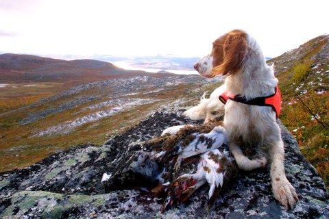 Illustrasjonsofot fra fjelltur.