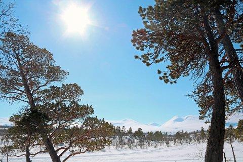 SMELTER: Det blir påsker også i framtiden, men sannsynligvis med mindre snø.