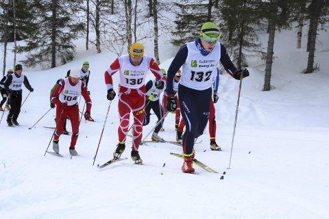 SKIFESTIVAL: Det er duket for skifest i Ballangen til helga, med stafett på fredag, sonerenn på lørdag og Håfjellrennet som flott avslutning på søndag. Foto: Ann Kvanmo