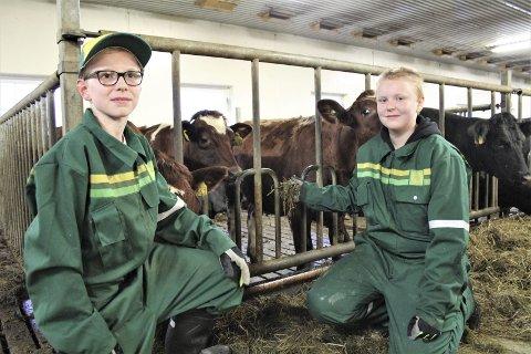 UTPRØVING: Marius Elvenes og Marie Furr er ikke fremmed for tanken om et yrke innen landbruk. Gjennom et helt skoleår får de nå testet ut hva det innebærer å være bonde. Foto: Ann Kvanmo