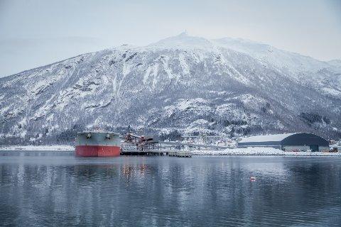 TJENENER GODT: Kaunis Iron hadde et positivt resultat med nesten 400 millioner i 2019. All produksjonen skupes ut over havna i Narvik.