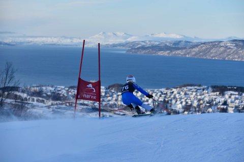 Mia Dreyer Holen fra Narvik Slalåmklubb deltok. Foto: Kjell G Karlsen