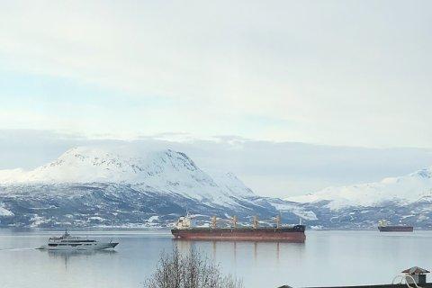 I NARVIK: Her glir yachten «Magna Grecia» inn til Narvik havn lørdag.