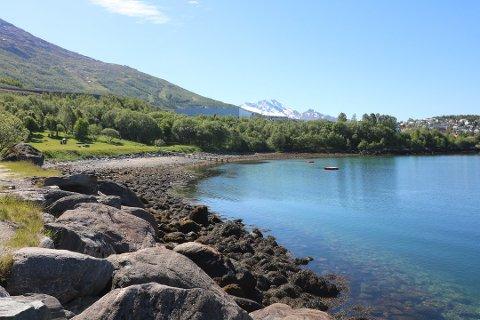 YNDET UNGDOMSSTED: Hadde ungdomsskoleelevene i Narvik fått tatt over styringa, hadde Ornesvika blitt totalforvandlet for sommeren.