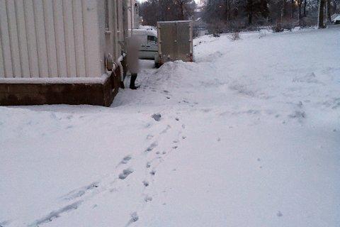 TATT PÅ FERSKEN: Knut Millerjord tok hundeeieren på fersken, mens hun lot hunden gjøre fra seg i hagen til Millerjords nabo.