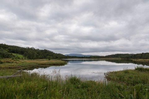 FYLT UT: I forbindelse med utbygging av Evenes flystasjon er det blant annet fylt ut masser i Svanevatnet i Nautå naturreservat. – Svanevatnet er en del av det internasjonalt viktige våtmarkssystemet i Evenes som også har status som Ramsarområde. Her har vi en av de største tetthetene av sårbare og trua arter i hele fylket, sier Tom Cato Karlsen.